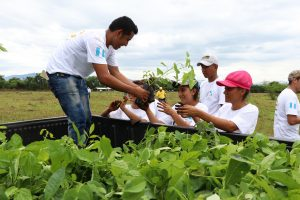 Guatemalan Sugar Industry Reforestation Program